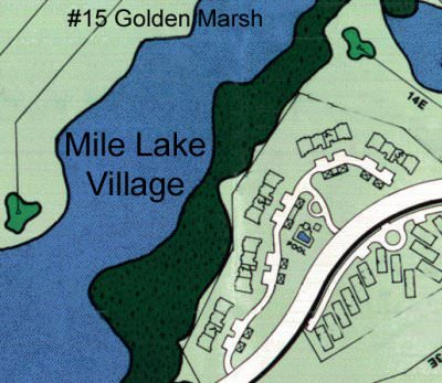 Mile_Lake_Village