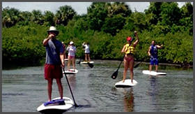 harbour-ridge-clubs-activities-paddle-boarding