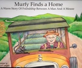 Market Update July August Murfy Finds A Home